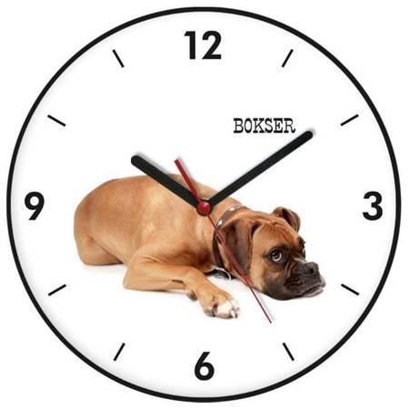 Zegar ścienny dla dziecka PIES ATE900PB BL SW